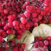 Rognebær og eple - Reksta villsau